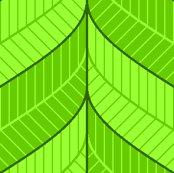 Leafyborderzm-300l-4lk-ll_shop_thumb