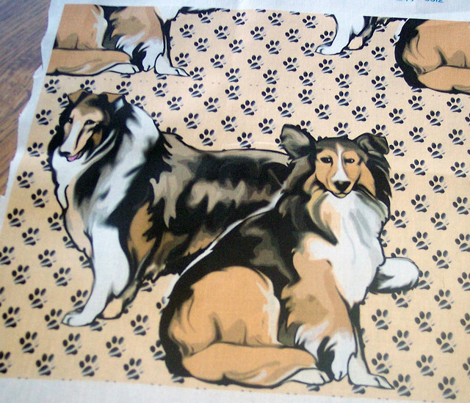 Rtwo_sable_collies__comment_285265_preview