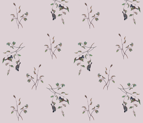 Finches on Pink fabric by jabiroo on Spoonflower - custom fabric