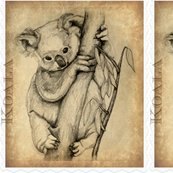 Koala_panel_ed_shop_thumb