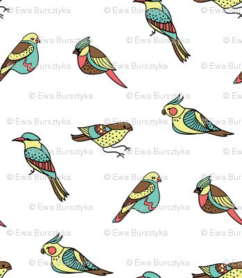 doodle birds on white