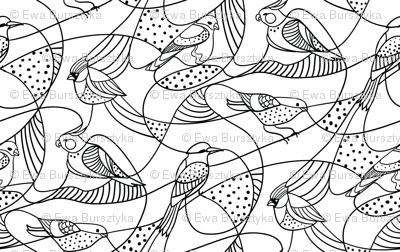 Hidden birds - black and white