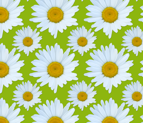 """Lazy Hazy Crazy Daisy"" fabric by jeanfogelberg on Spoonflower - custom fabric"
