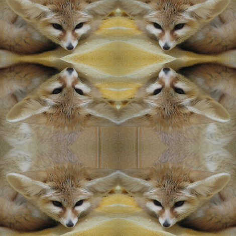 Desert Fox fabric by ravynscache on Spoonflower - custom fabric