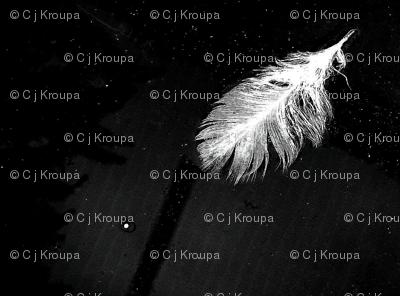Night Feathers