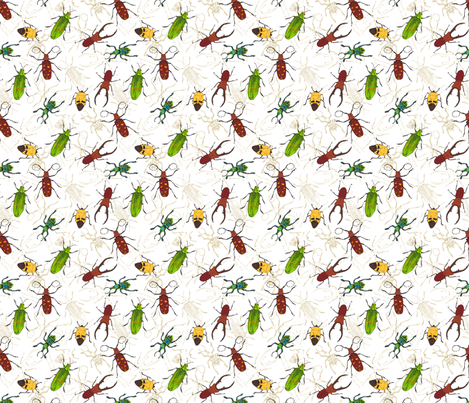 beetles fabric by marlene_pixley on Spoonflower - custom fabric