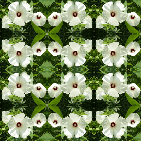 White Hibiscus fabric by ravynscache on Spoonflower - custom fabric