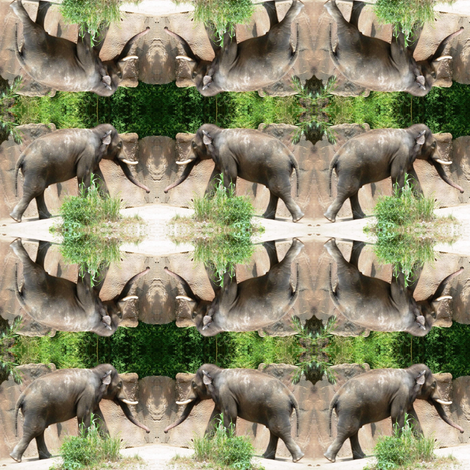 Elephants fabric by ravynscache on Spoonflower - custom fabric