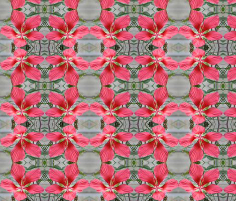 Hibiscus Lattice fabric by ravynscache on Spoonflower - custom fabric