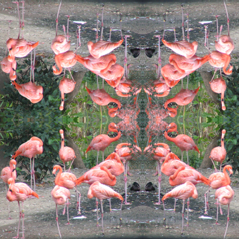 Flamingos on the Green fabric by ravynscache on Spoonflower - custom fabric