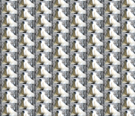 Polar Bear Stripes fabric by ravynscache on Spoonflower - custom fabric