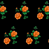 Orange rose on black