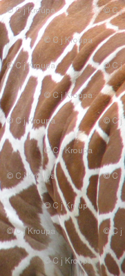 Giraffe Pelt