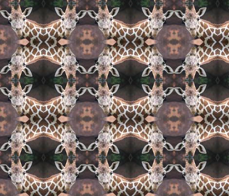 Giraffe Circles Two