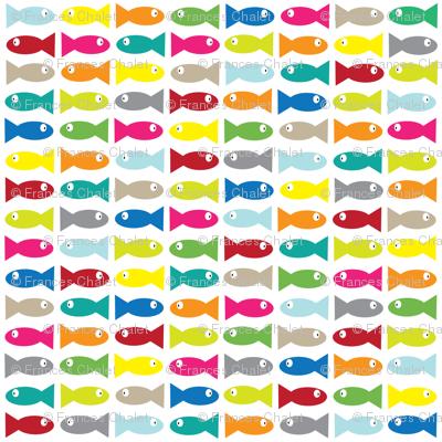 Multi Fish.