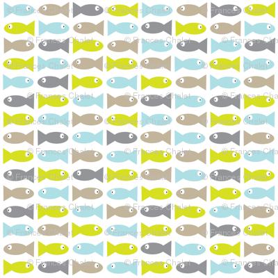 Mini Fish.