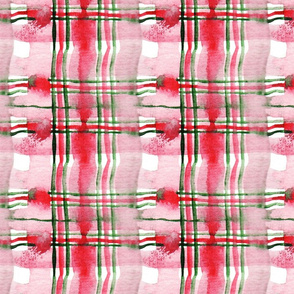 antoinette tartan M