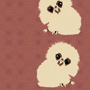 Cute Owlets