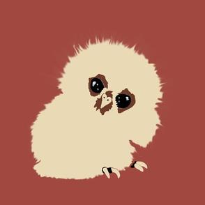 Owlet Babies