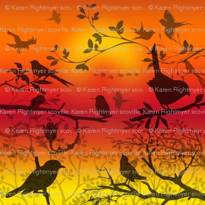 birds shadows sunset