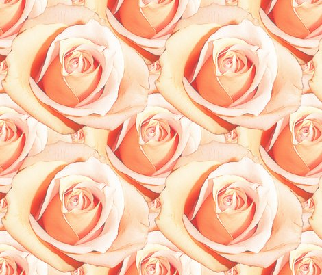 Romantic_roses___pale___medium_shop_preview