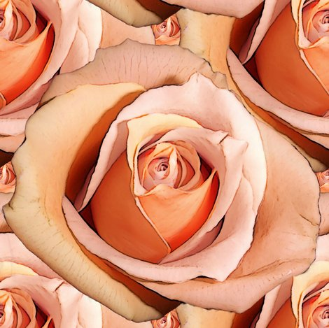 Rlady_hamilton_roses_bright_shop_preview
