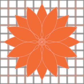 Orange_Lotus_plaid_stripes