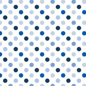 pois_moyen_multi_bleu_S