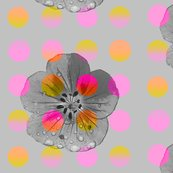Rluminous_polka_flower_shop_thumb