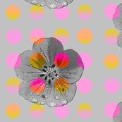 Rluminous_polka_flower_shop_thumb