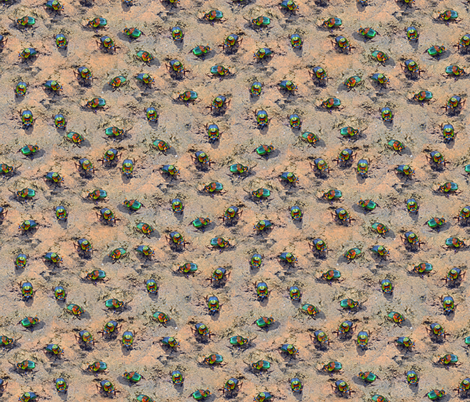 Beetles fabric by eclectic_house on Spoonflower - custom fabric