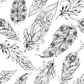 Feathers_shop_thumb