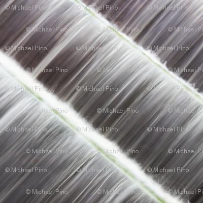 Gray Waterfall