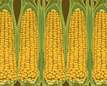 Corn_stripe_vert_thumb