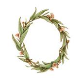 Gum leaf Wreath