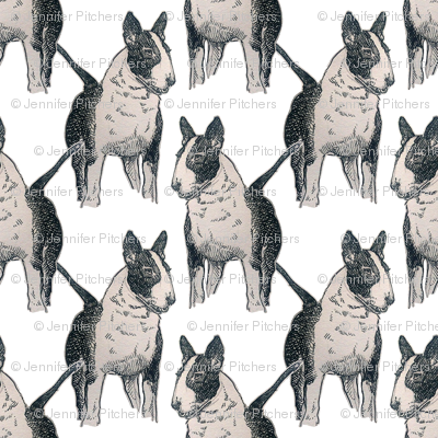 Old English Bull Terrier