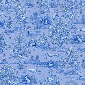 Blue on Blue Greyhound Toile coordinate