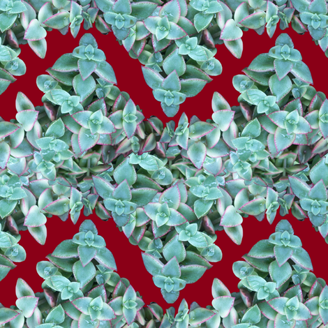 Succulent Chevron fabric by pond_ripple on Spoonflower - custom fabric
