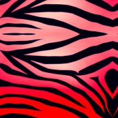 Rrrrrzebra-stripes-wallpaper-i18_ed_shop_thumb