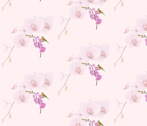 Rrrrrrorchids_shop_preview