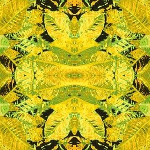 Croton Leaves-green/yellow