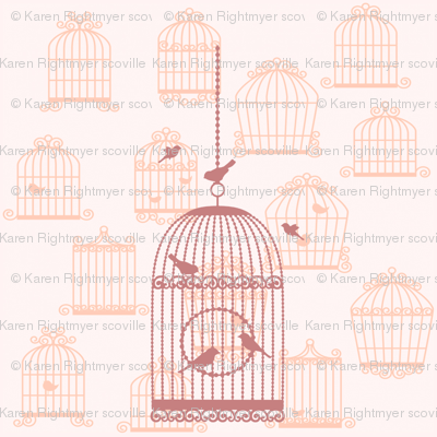 bird cages - pink