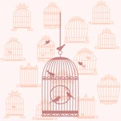 Rrrrrbirdcages_shop_thumb