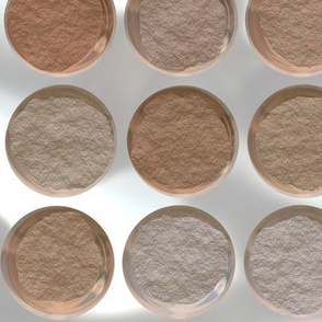 Got Makeup? Powder Palette