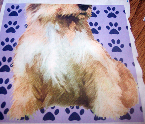 Norfolk Terrier fabric