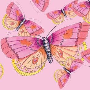 Bubblegum Butterflies