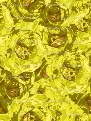 roses-chartreuse