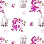 Rose Cage