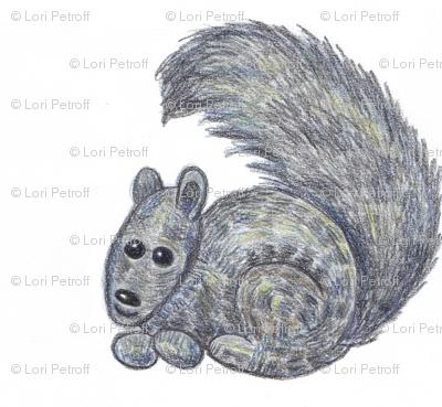 Little Black Canadian Squirrel