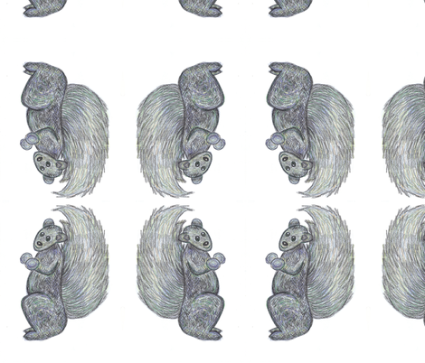 Little Black Canadian Squirrel  fabric by lorigrace on Spoonflower - custom fabric